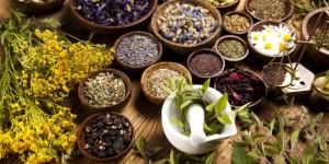 herbal-medicine-mx-680x340-1440545288