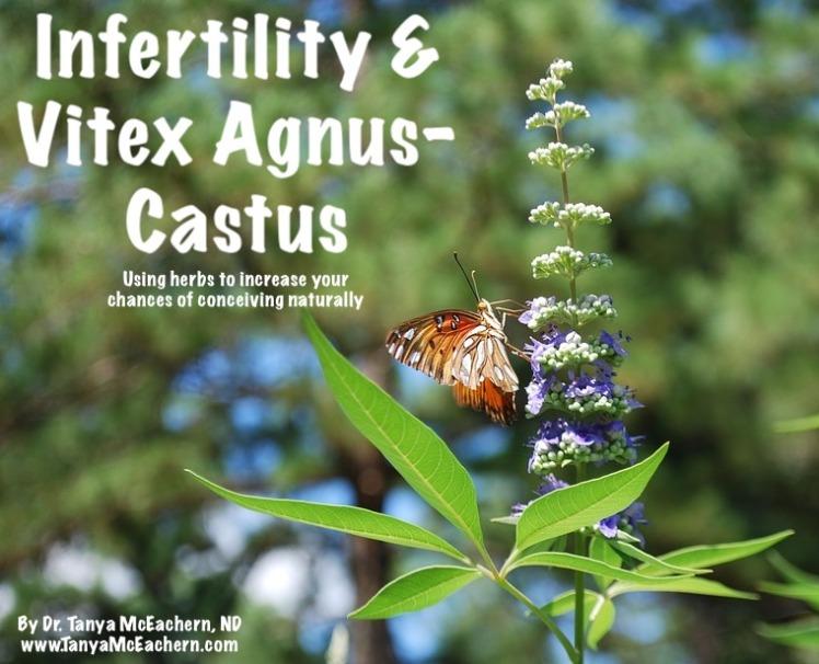 Infertility & Vitex Agnus-Castus – Dr  Tanya McEachern